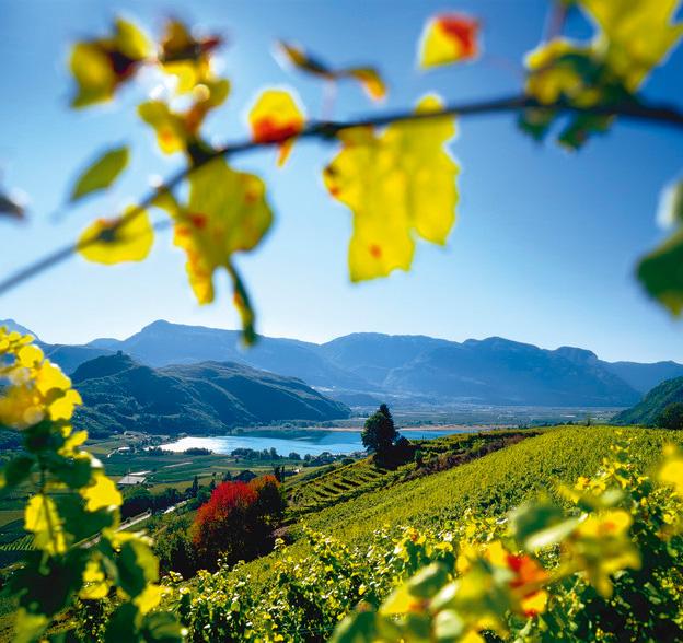 Aus dem restlichen Südtirol