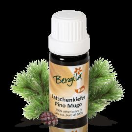 Ätherisches Öl Latschenkiefer Bergila BIO 10 ml