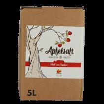 Tasiolerhof Apple juice 5 l