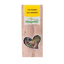 Pflegerhof ORGANIC Children's herbal tea 20 g